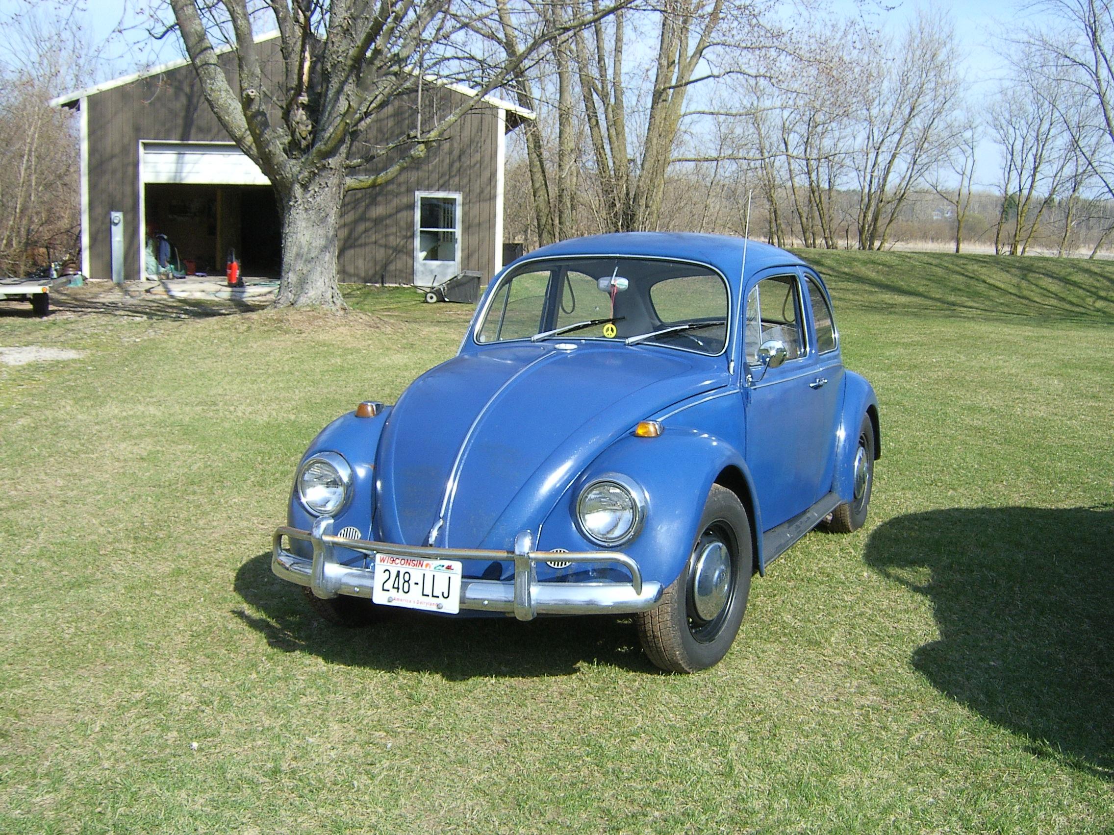 beetle 1967